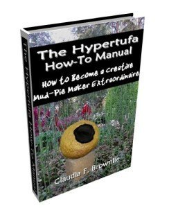 The Hypertufa How-To Manual ebook