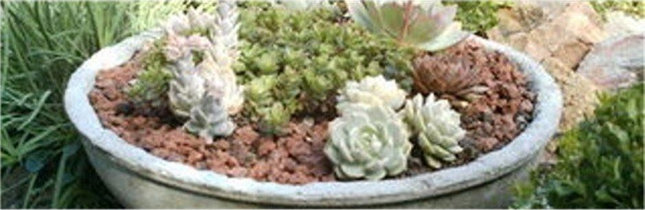 Hypertufa.net – Garden Art header image